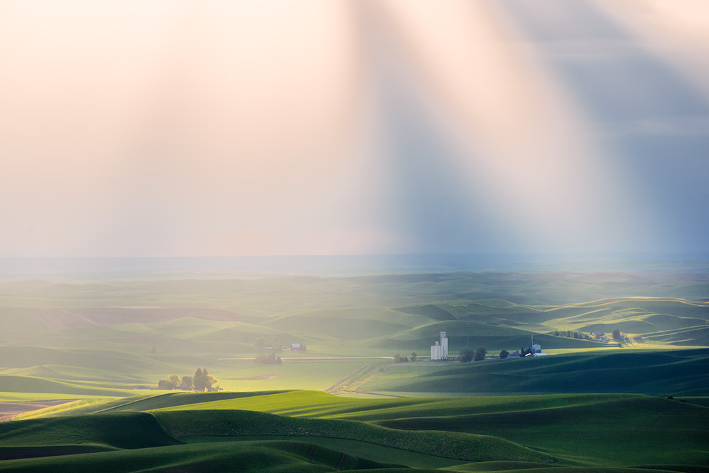 Palouse Light06