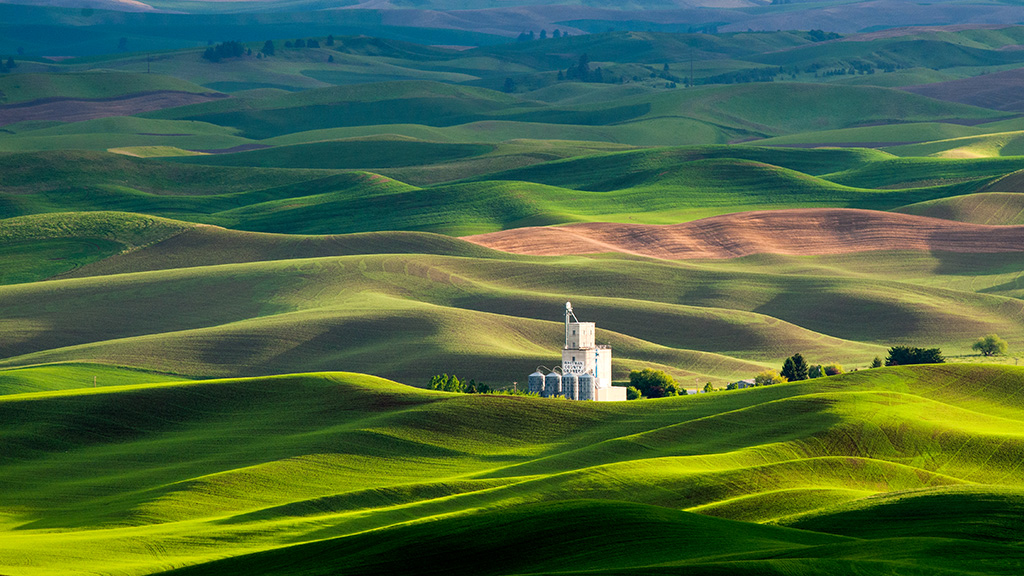 Palouse Light01