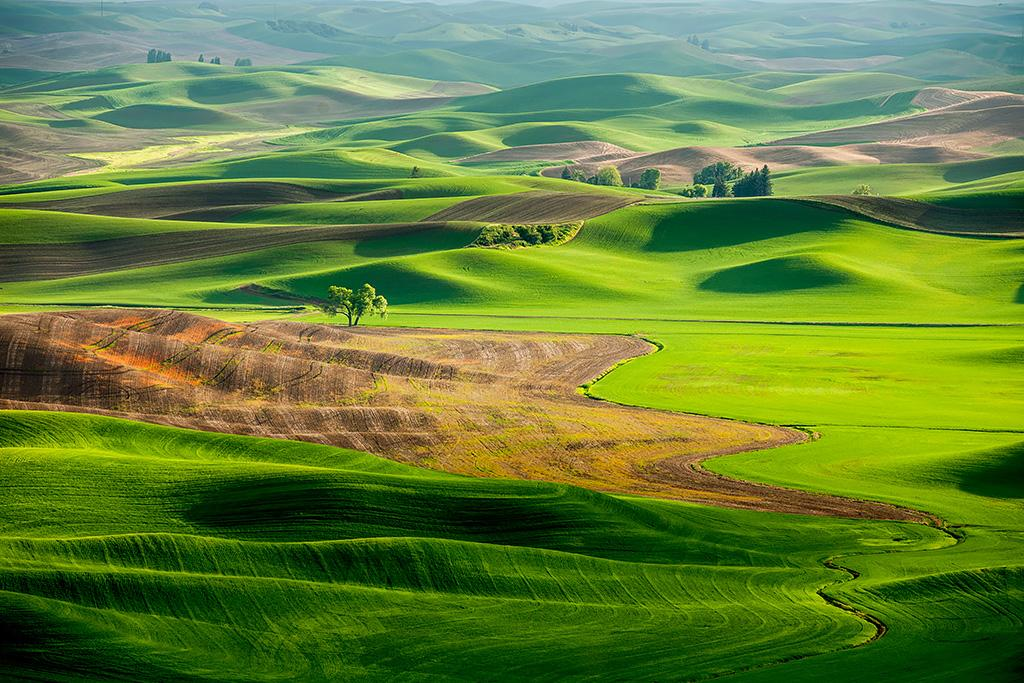 Palouse Light02