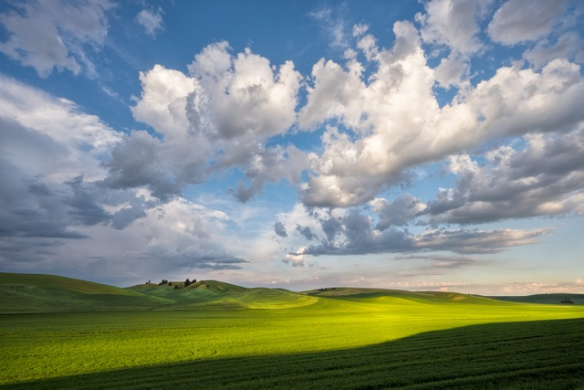 Palouse Light07