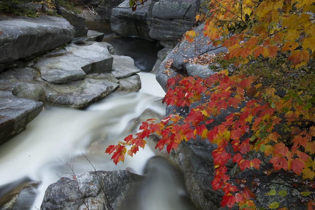 Tony Sweet-shooting Fall colors03