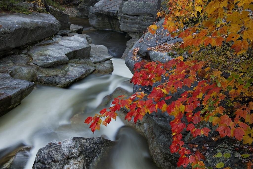Tony Sweet-shooting Fall colors04