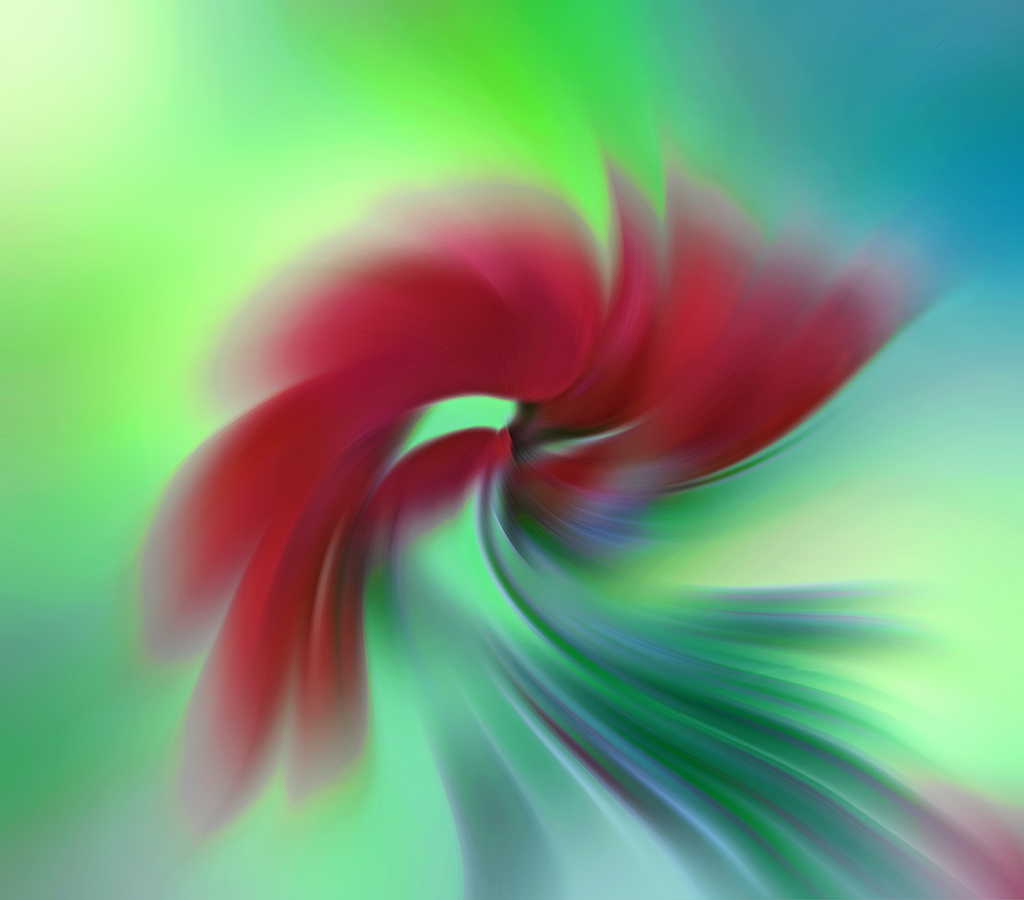 Flower Abstract 4644ZT