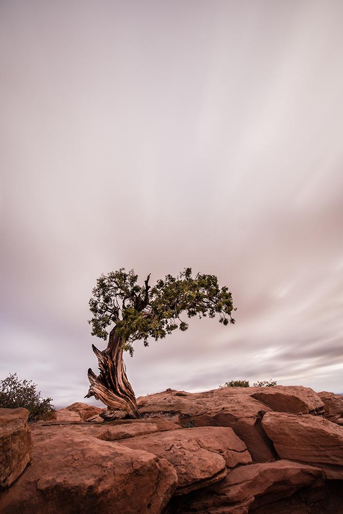 Moab, UT.